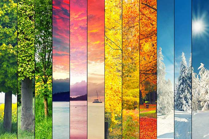 all the seasons